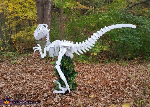 "Back view, ""Dino Bones"" T-Rex Skeleton Costume"