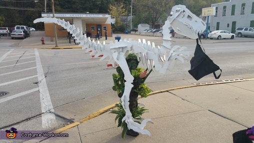 "Dino's want candy too, ""Dino Bones"" T-Rex Skeleton Costume"