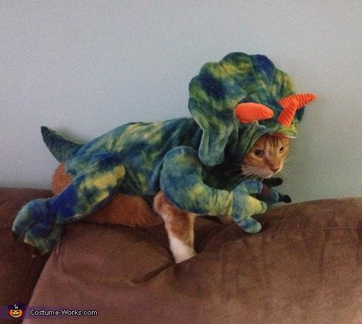 DinoCat Costume