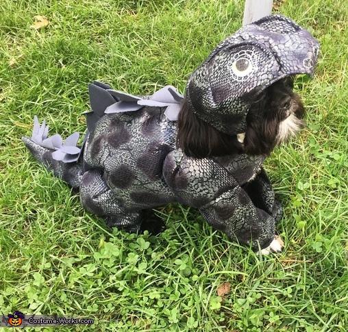DinoDog Costume