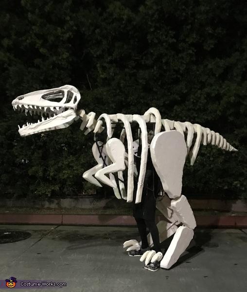 Dinosaur Fossil Costume