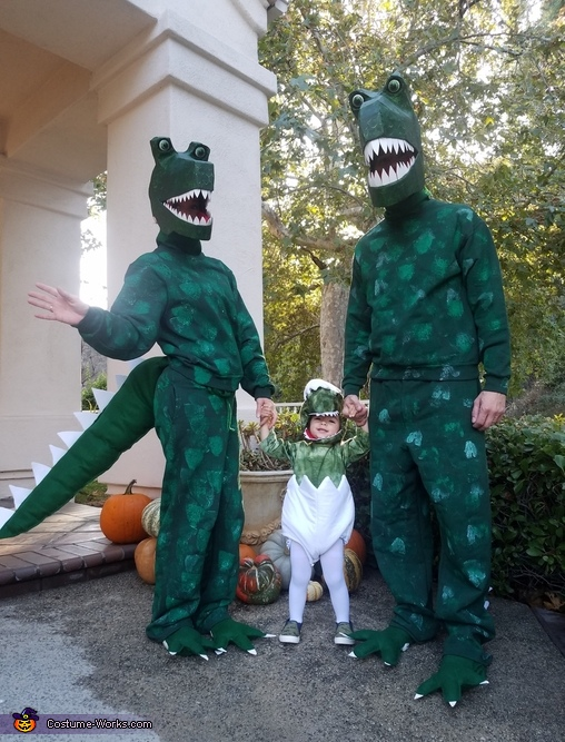 Dinosaurs Family Costume