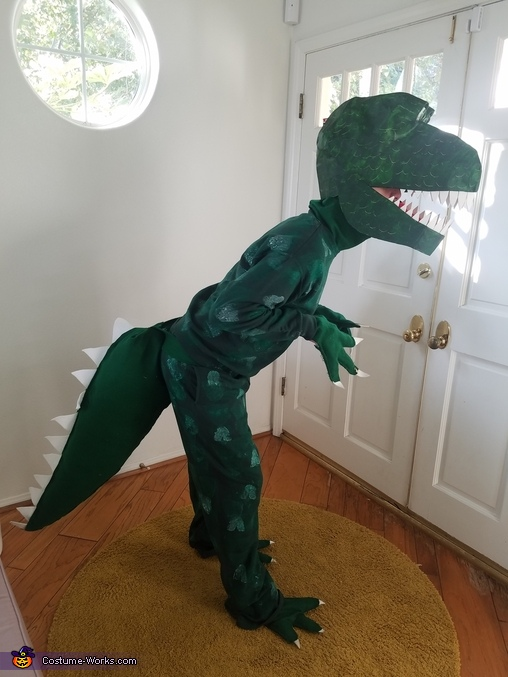 Dinosaurs Family Homemade Costume