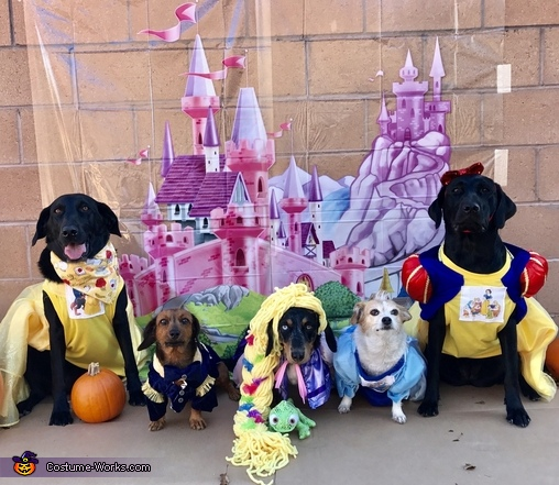 Disney Prince & Princesses Dogs Costume
