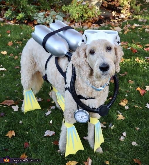 Scuba dog, Dive Team Costume