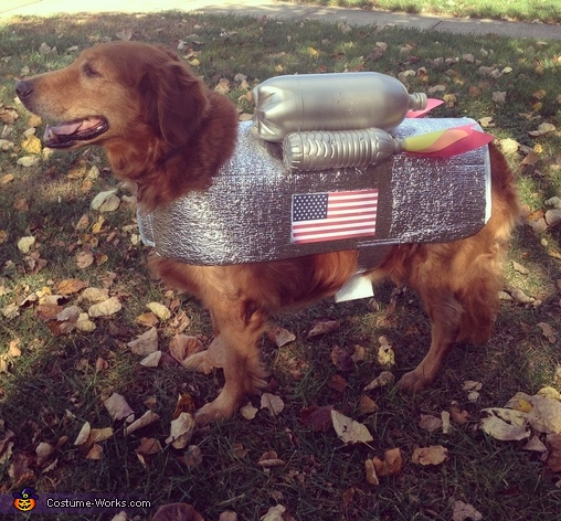 Dog Astronaut Costume