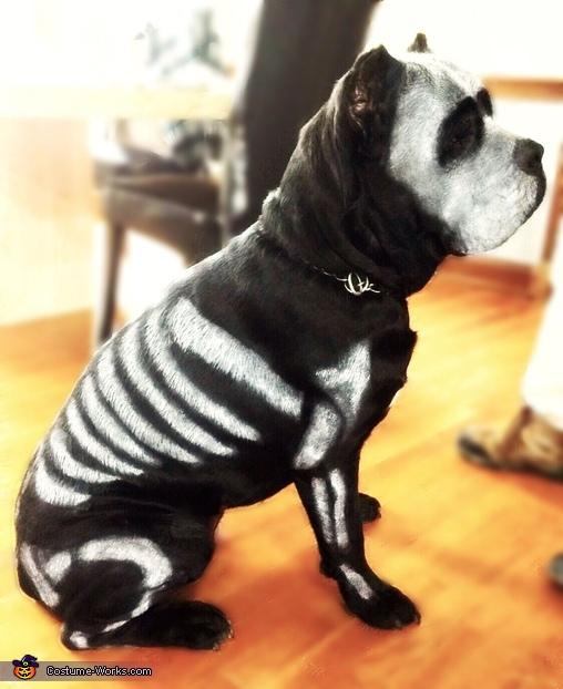Dog Bones Costume