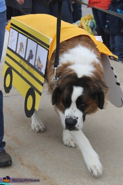 Leading the Parade, Dog School Bus Costume