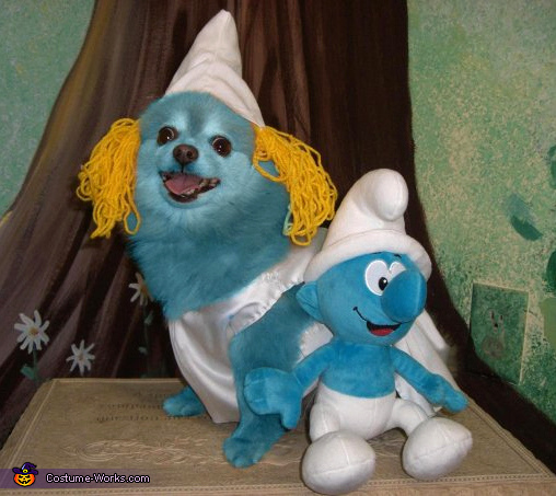 Smurfette - Homemade costumes for pets