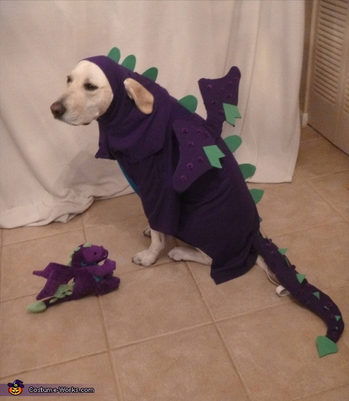 halloween 2012, Dragon Dog Costume