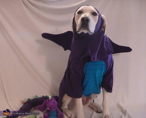 forward shot, Dragon Dog Costume