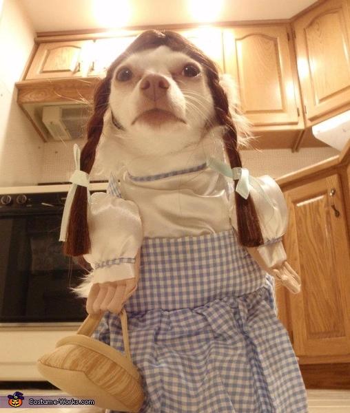 Dogothy Costume