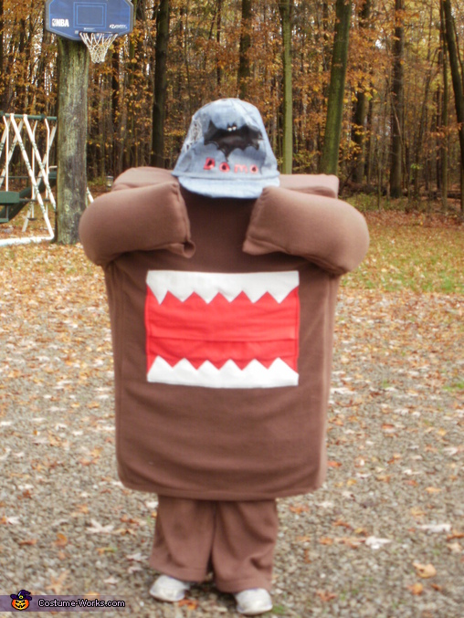 Domo I Can't See You!, Domo Costume