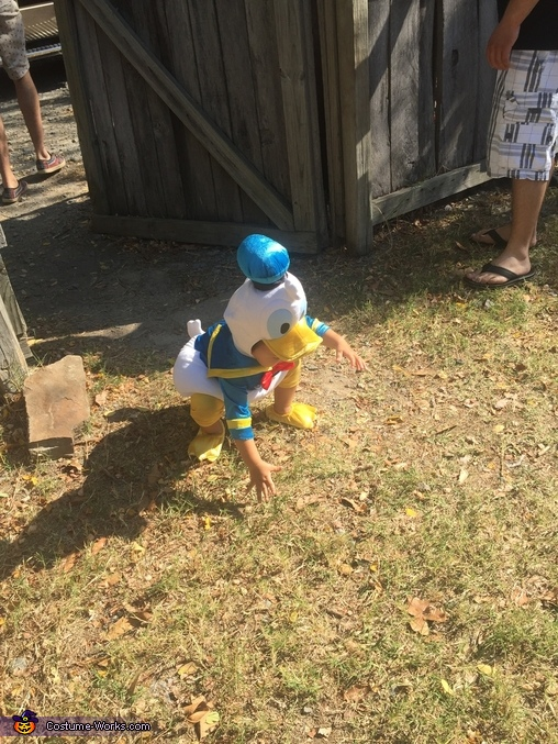 Donald Duck Baby Halloween Costume