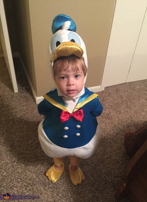 how to make a donald duck costume