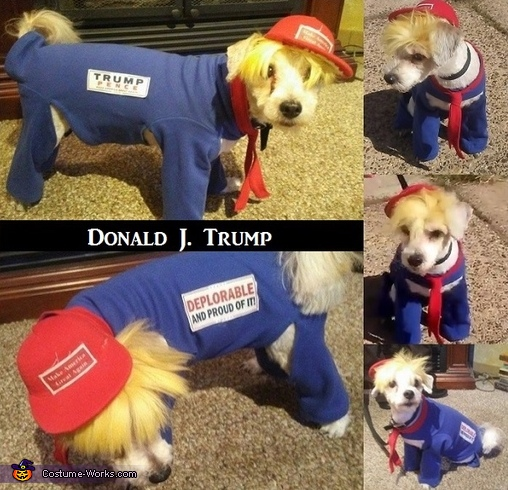 Donald J. Trump Costume
