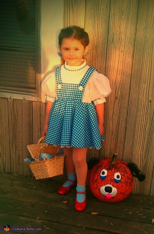 DIY Dorothy Costume