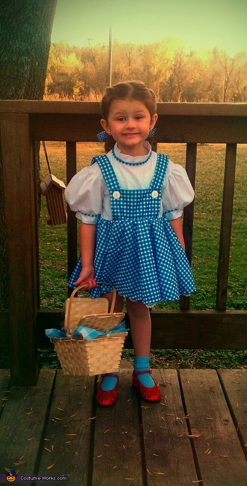 Diy Dorothy Costume Photo 2 2
