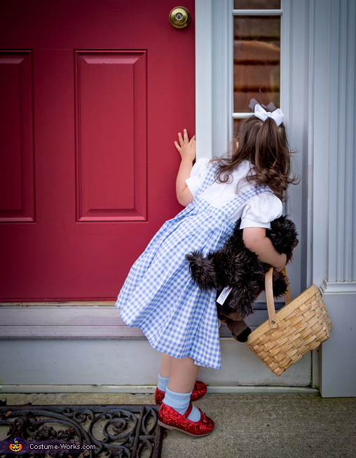 Toddler Dorothy Costume
