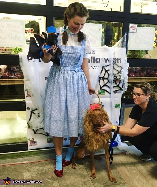 Dorothy and Scarecrow Homemade Costume