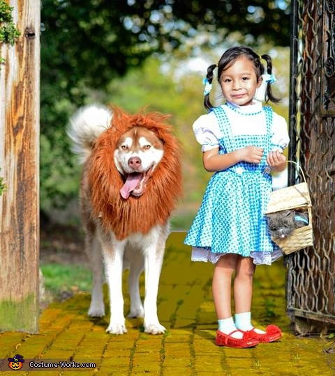 Dorothy and the Cowardly Lion Costume