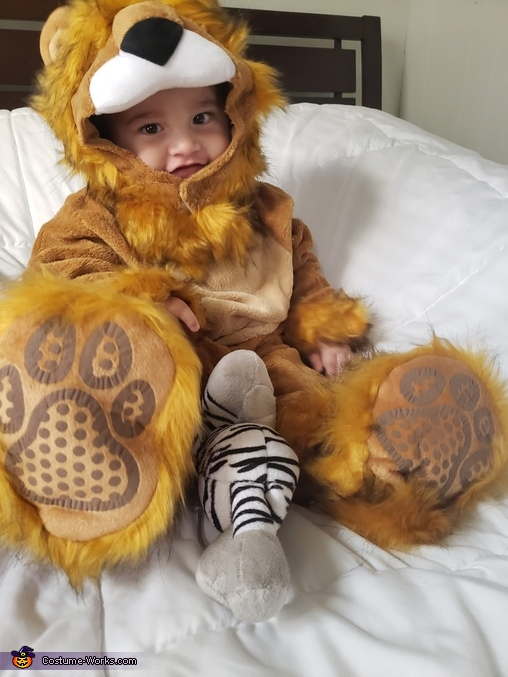My courageous lion baby, Dorothy and the Lion Costume
