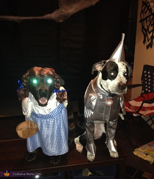 Dorothy and the Tin Man Costume
