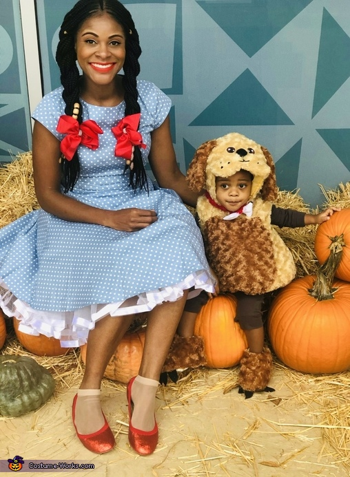 Dorothy and Toto Costume