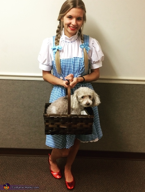 Dorothy And Toto Costume Diy