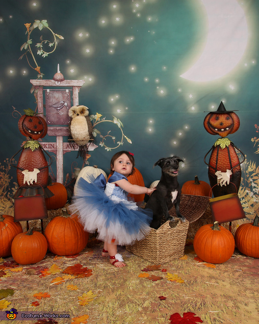 Oh no Toto! We're not in Kansas anymore!, Dorothy & Toto Costume