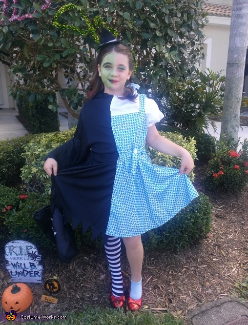 Dorothy / the Wicked Witch Costume
