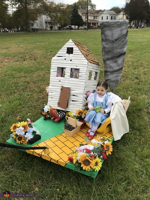 """""""It's a Twister!"""", Dorothy - Wizard of Oz Costume"""