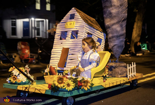 """""""There's no place like home"""", Dorothy - Wizard of Oz Costume"""