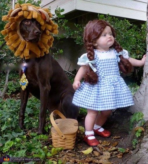Dorthy & The Lion Costume