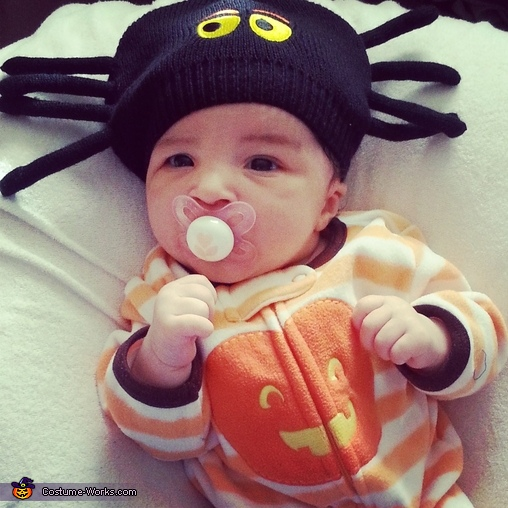 Down Came a Spider Baby Costume