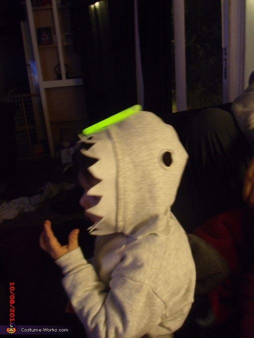 Homemade Shark Costume