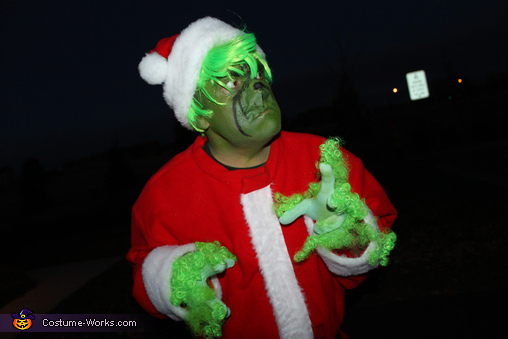 'Well, pucker up and kiss it, Whoville.' -Grinch, Dr. Suess' The Grinch Characters Family Costume