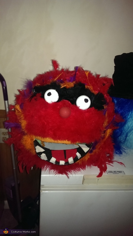 Animal mask, Dr. Teeth and The Electric Mayhem Costume