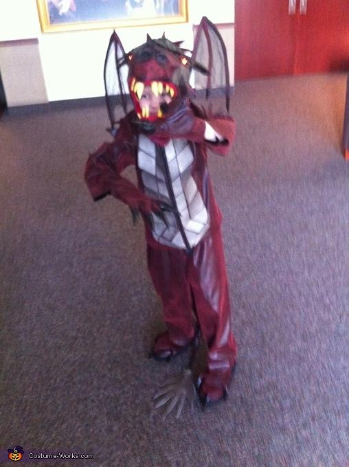 Diy Dragon Costume Photo 2 8