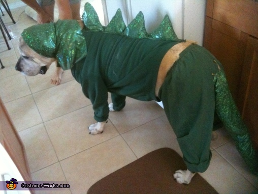 Fearsome Dragon Costume