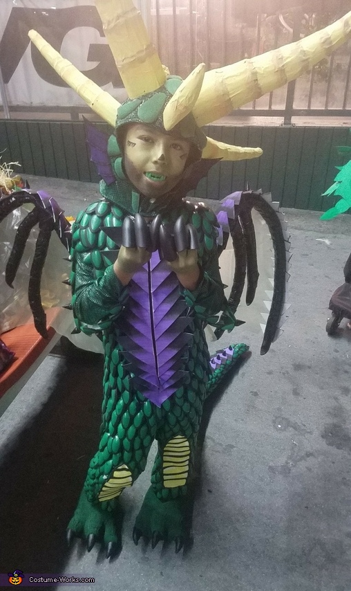 Dragon Homemade Costume