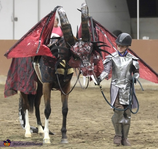 Dragon and Knight Costume
