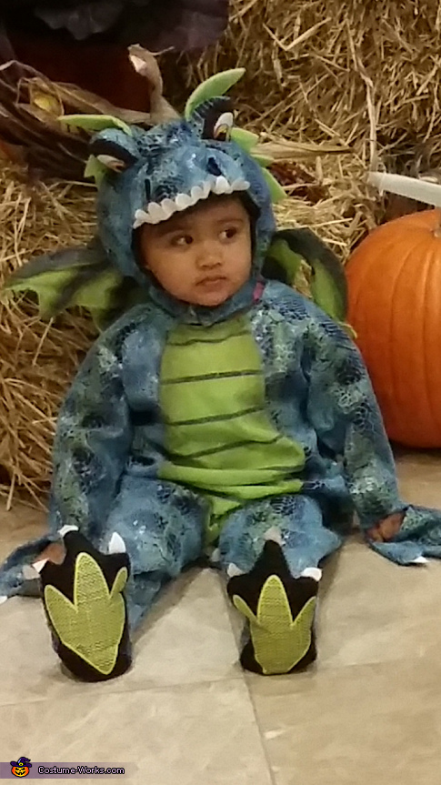 'Scary dragon' looking to scare someone, Dragon Baby Costume