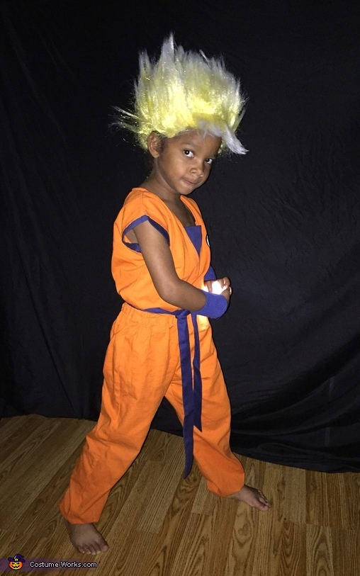 Dragon Ball Z Goku Costume