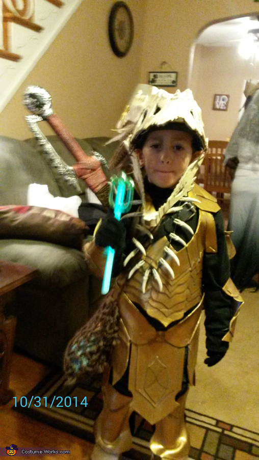 Dragon Hunter Homemade Costume