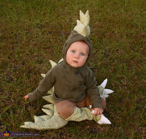 Dragon, Knight and Princess Costume