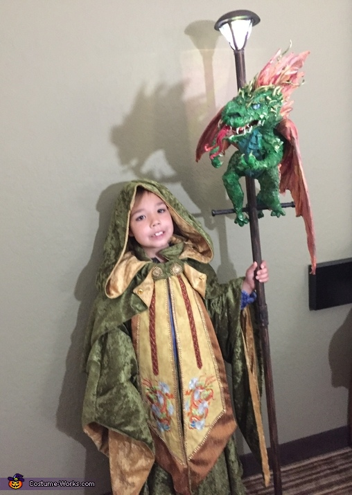 Dragon Master Wizard Costume