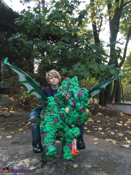from front with wings open, Dragon Rider Costume