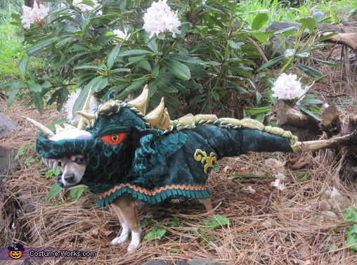 Dragon Tail - Homemade costumes for pets
