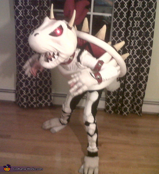 Dry Bowser Costume
